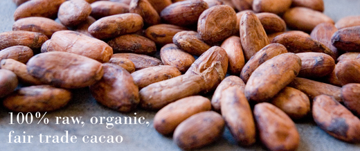 Cacao-Banner