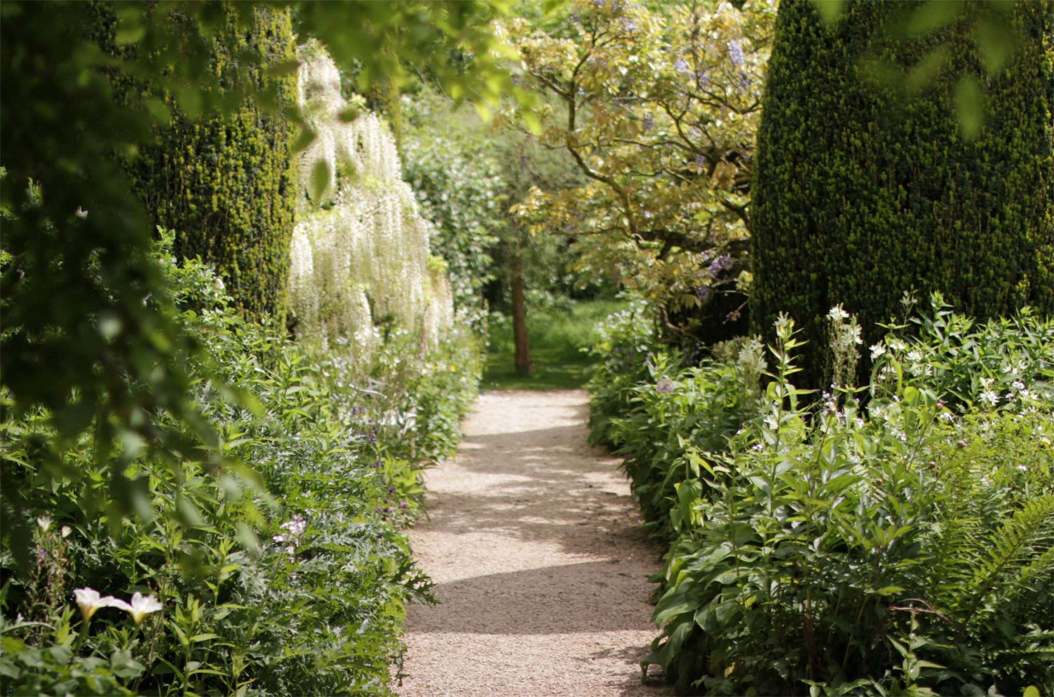 gardens archives eckersley garden architecture