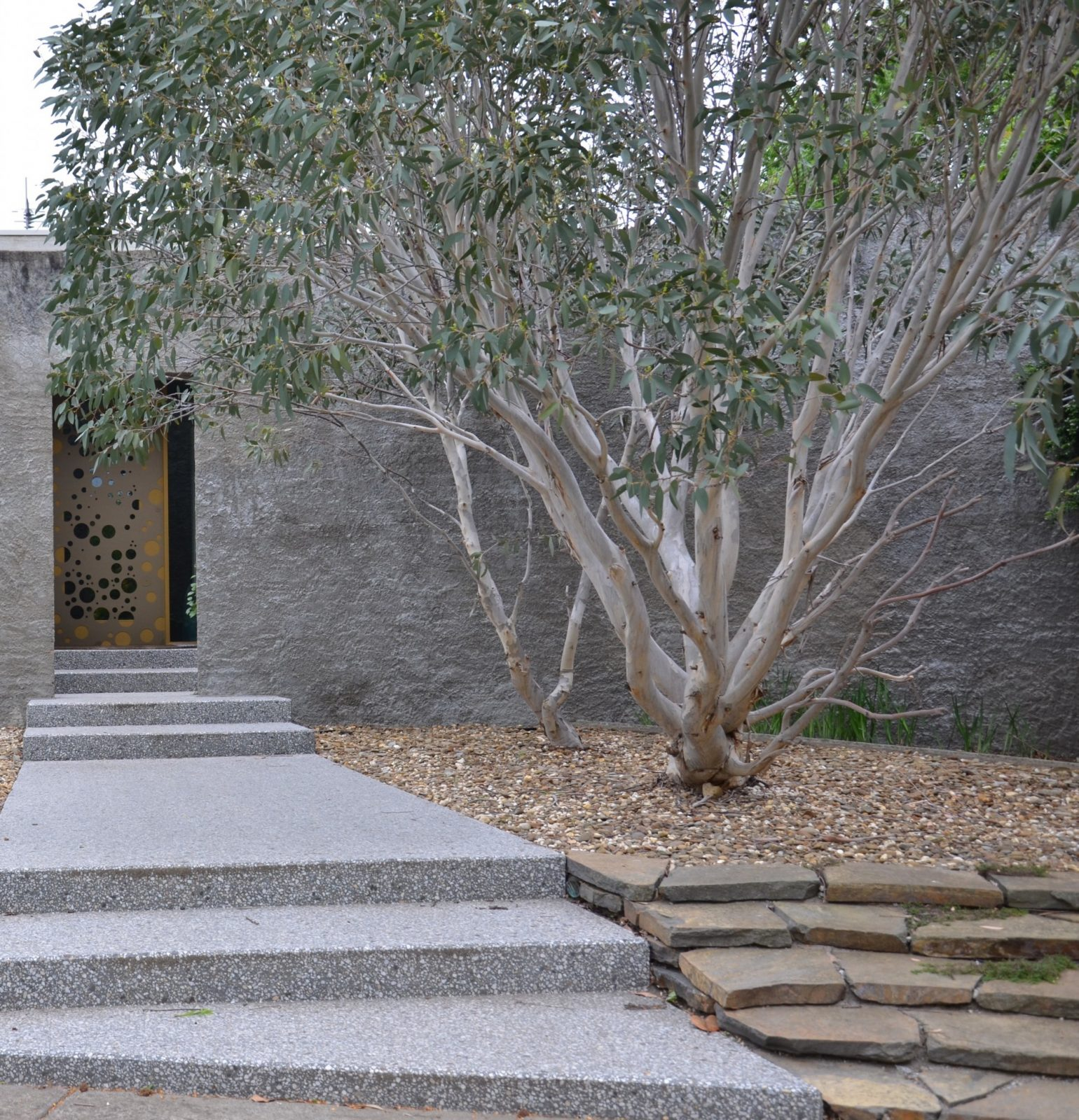 Trees For The Urban Landscape Eckersley Garden Architecture
